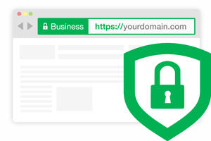 extended-ssl-browser